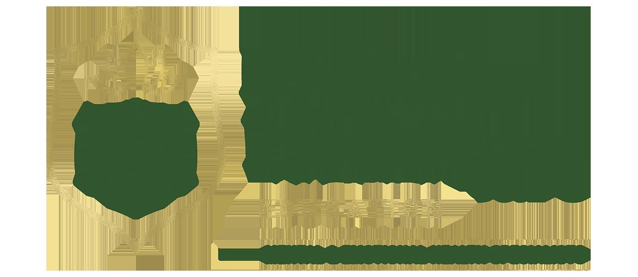 Holistic healthcare education